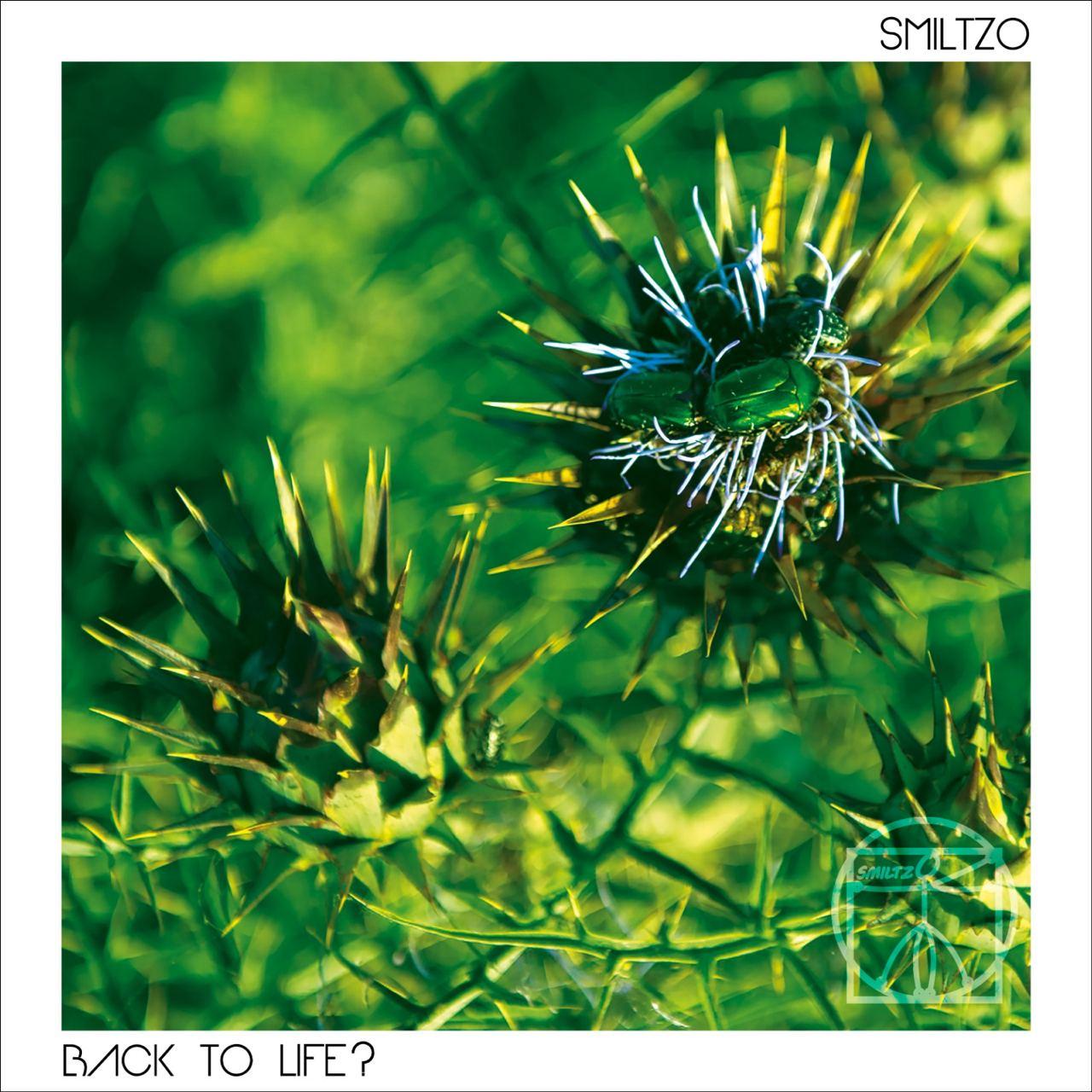 IYE40: Smiltzo - Back To Life
